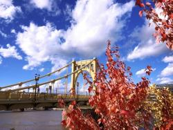 lunch break tales: autumn in the 'burgh edition